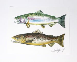 Trout Fish Art Print- 11x14, Animal Art, Outdoor Art, Home Decor