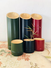 Load image into Gallery viewer, Japanese Bamboo Sake Server Green - 真竹彩り酒器