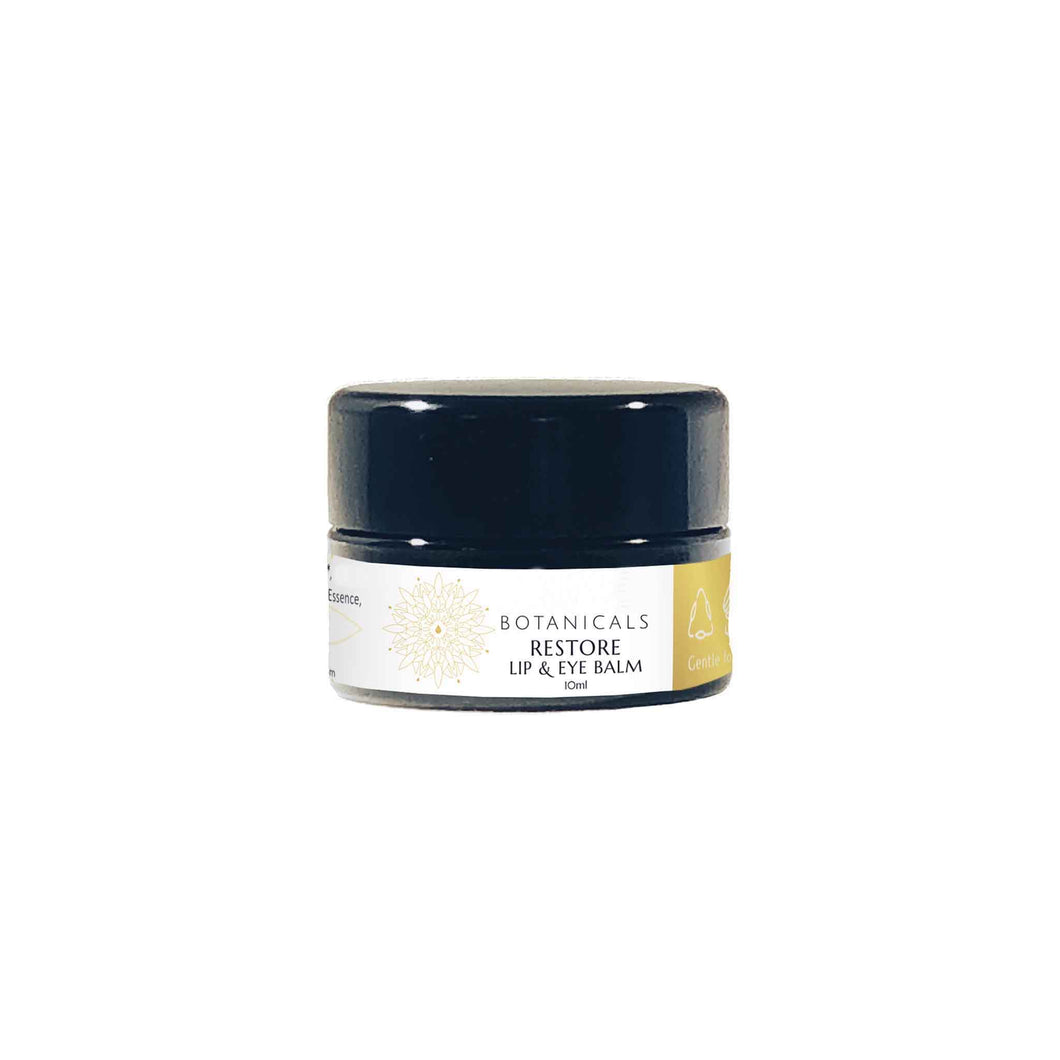 Restore Lip & Eye Balm by Satva Botanicals