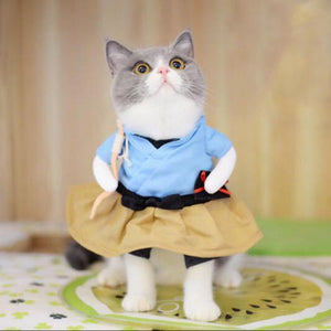 Funny clothes for Cat
