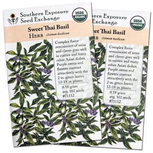 Certified Organic Sweet Thai Basil Seeds, Two Pack of 100 Seeds Each for Planting