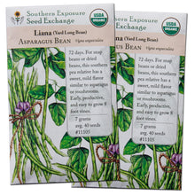 Load image into Gallery viewer, Certified Organic Yard Long Bean Seeds (Liana Asparagus Bean), Two Pack of 40 Seeds Each for Planting