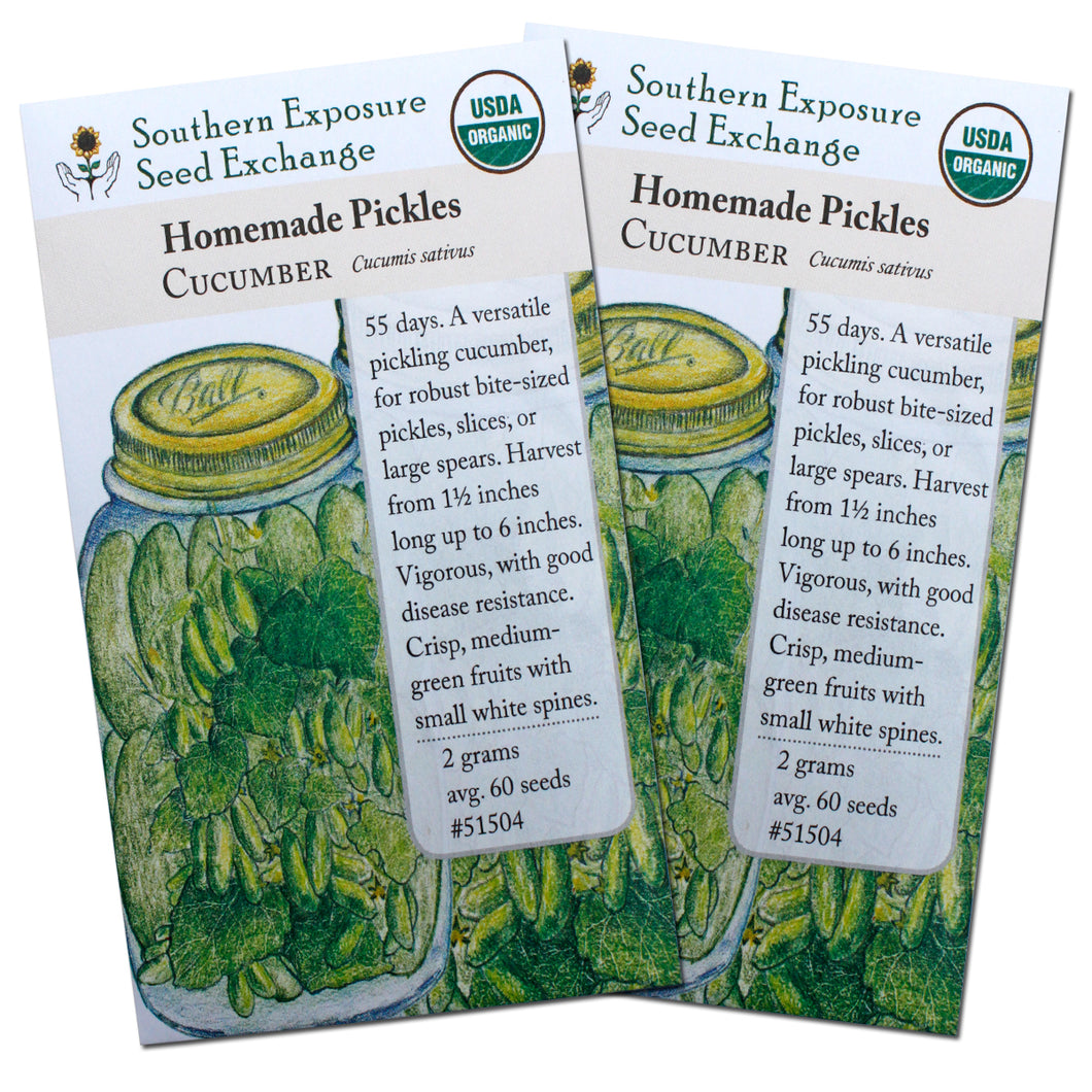 Certified Organic Pickling Cucumber Seeds, Two Pack of 60 Seeds Each - Non-GMO Seeds for Planting