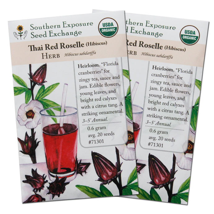 Heirloom Organic Roselle Seeds (Hibiscus Sabdariffa) - Two Pack of 20 Seeds Each