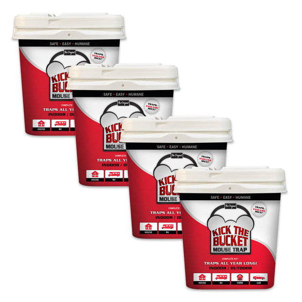 Kick The Bucket Mouse Trap - 4 Pack