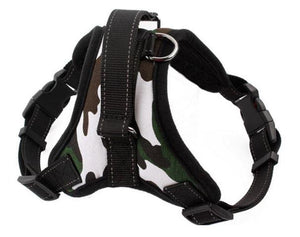 No Pull Dog Harness