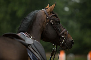 ORIGIN - Flash (Removable) Bridle