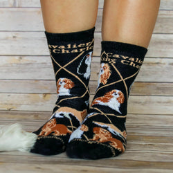 Cavalier King Charles Spaniel Black Socks