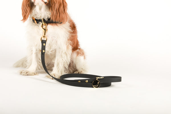 PARK AVENUE Black Vegan Leather Leash