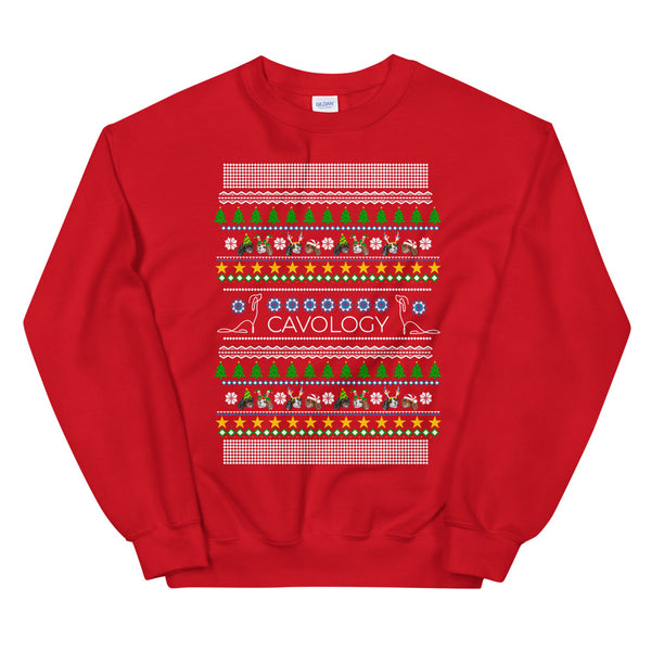 SWEATSHIRT - CAVMAS PARTY