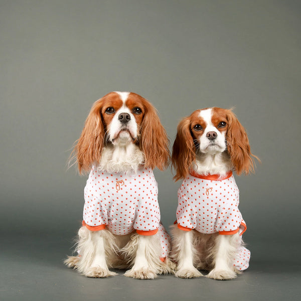 GIRAFFE PYJAMAS FOR DOGS