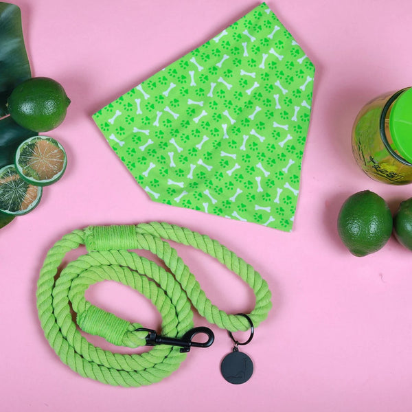LIME POP ROPE LEASH
