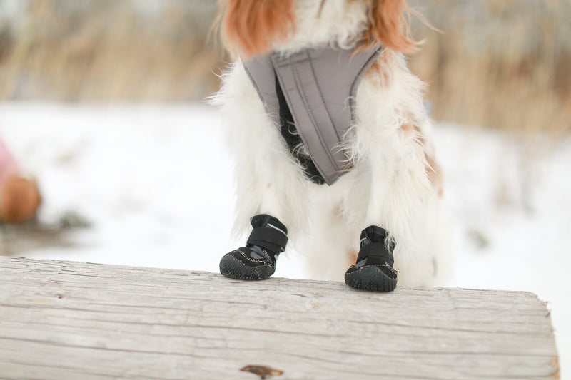 Dog Boots SNOW MUSHERS by Muttluks