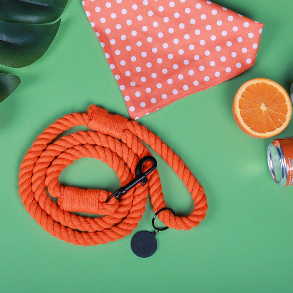 ORANGE CRUSH'D ROPE LEASH