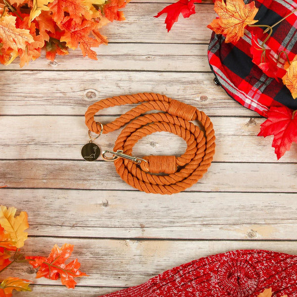 PUMPKIN SPICE Rope Leash