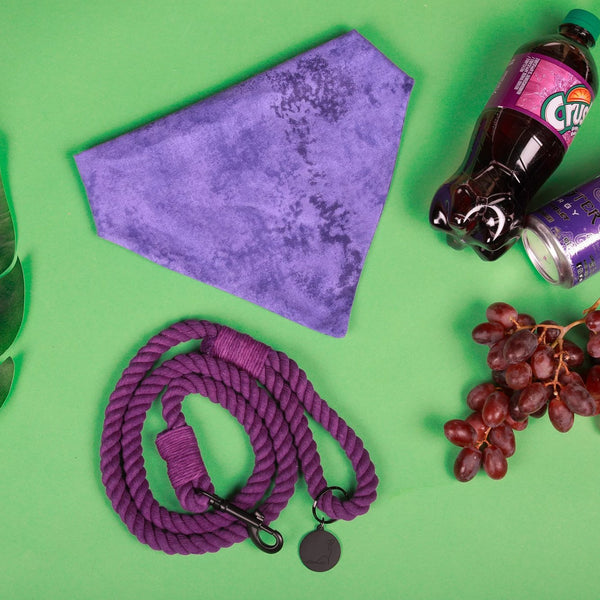 GRAPE SODA ROPE LEASH