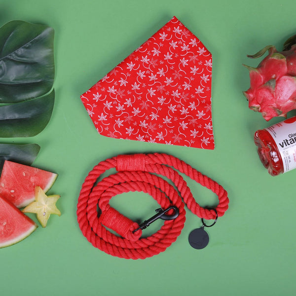 WATERMELON SORBET ROPE LEASH