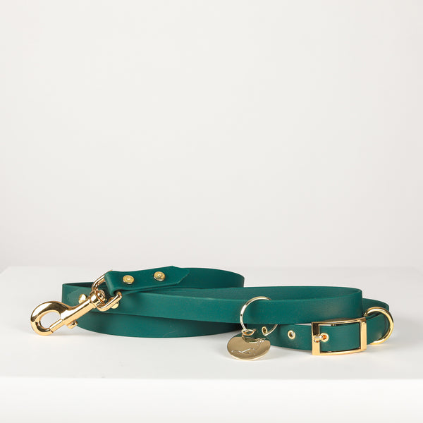 Leash and Collar set | 5th Ave Gold Vegan Leather