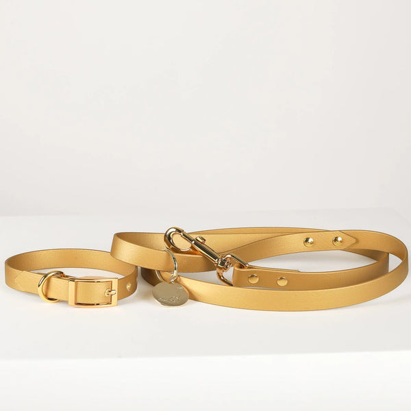 Leash and Collar set | Broadway Gold Vegan Leather