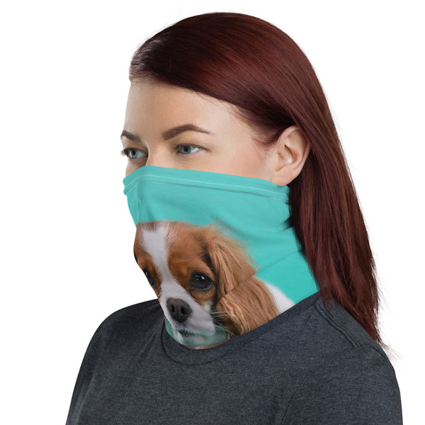 Blenheim Neck Gaiter