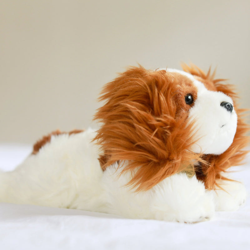 CAVALIER KING CHARLES PLUSH TOY - BLENHEIM (large)