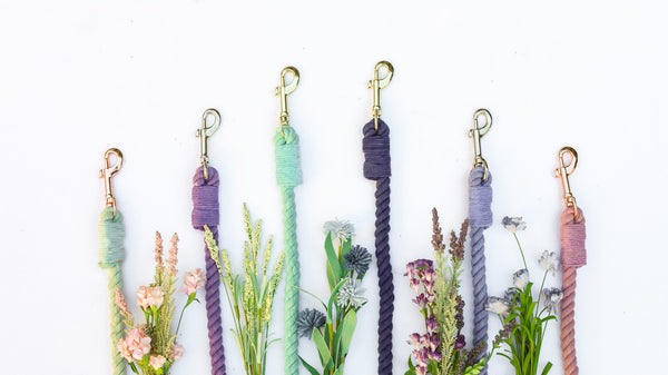 LA LA LAND | SPRING ROSE rope leash