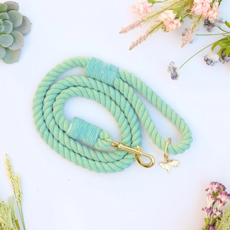 MALIBU | ROBIN EGG BLUE rope leash