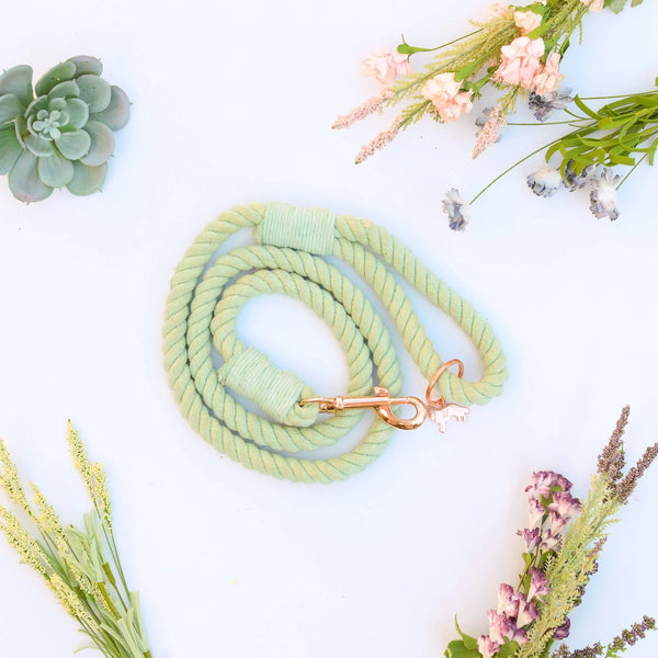 PALM SPRINGS | SEAFOAM rope leash