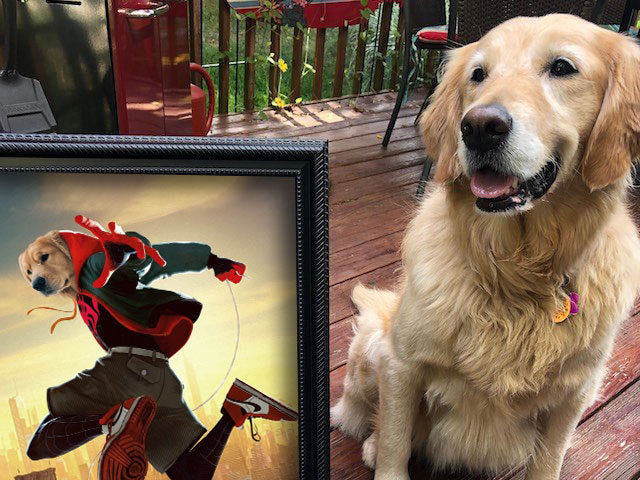 Spider Dog Into The Spider Verse Single - Custom Pet Canvas