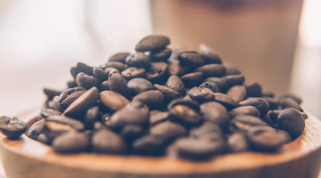 Java's Journey: How Coffee Came to America