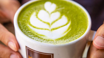 Mucho Matcha: A Powerful Green Tea