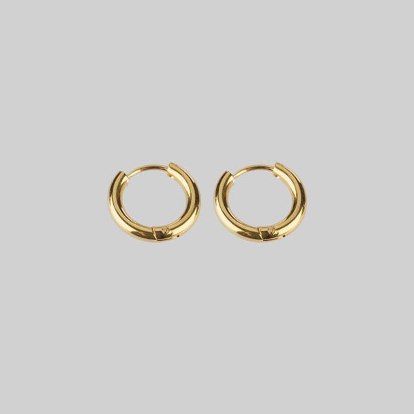 gold little hoop earrings