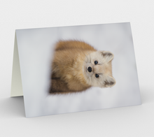 Load image into Gallery viewer, Pine marten greeting card, set of 3