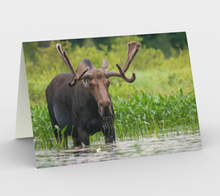 Load image into Gallery viewer, Moose card, set of 3