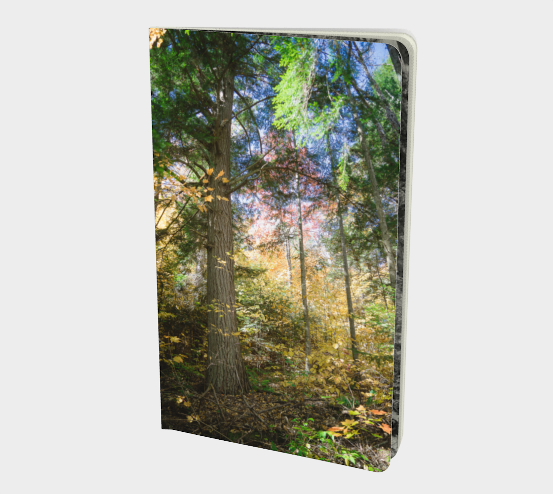 Hemlock Bluff notebook