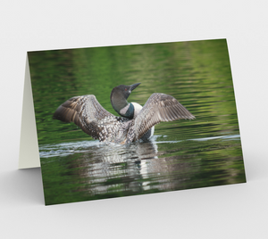 Loon greeting card, set of 3