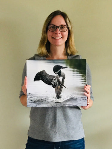 "Loon 11x14"" Canvas print"