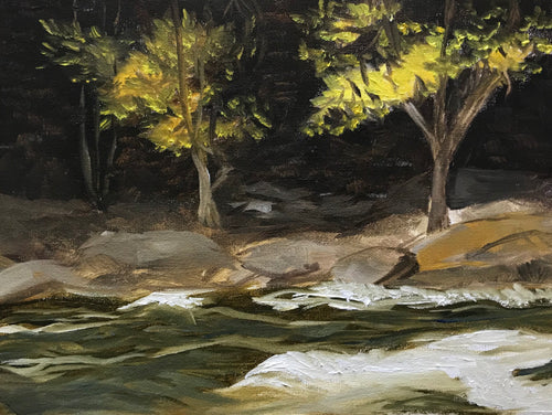 Yellow leaves on the Oxtongue Rapids