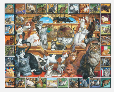 World of Cats