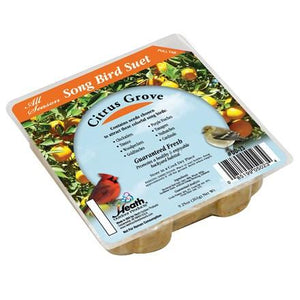Citrus Grove Suet Cake - 9.25 oz - Pack of 16 - Heathoutdoors