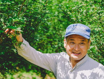 man smiling as picking sansho pepper seeds