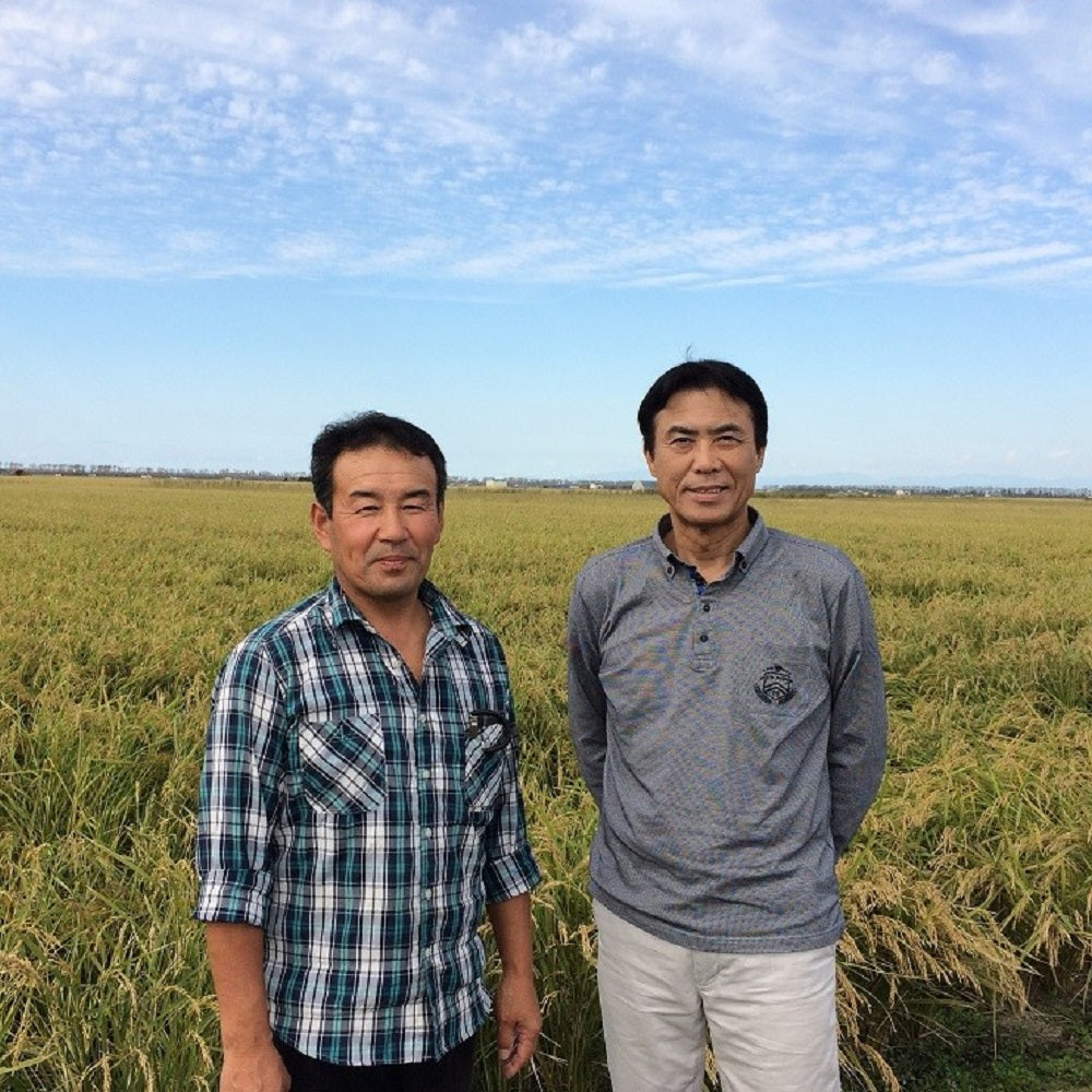 Two farmers standing in the middle of rice field