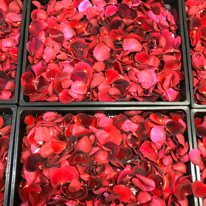 Bunch of rose petals in baskets