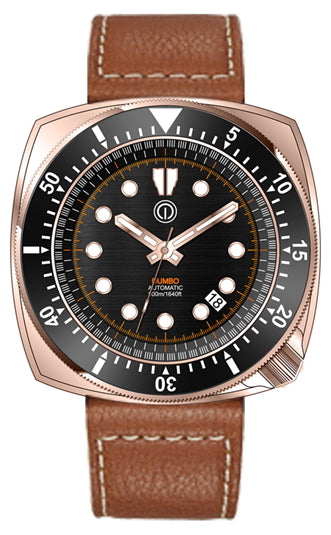 DUMBO 500M DIVE WATCH BRONZE CUSN8 NH35