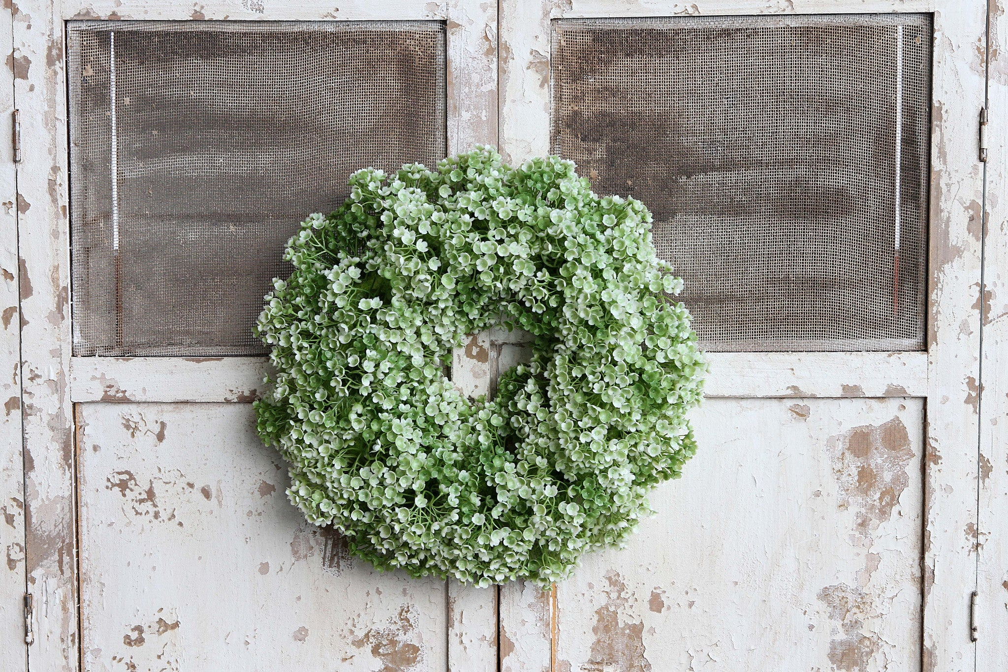 Baby Tear Wreath