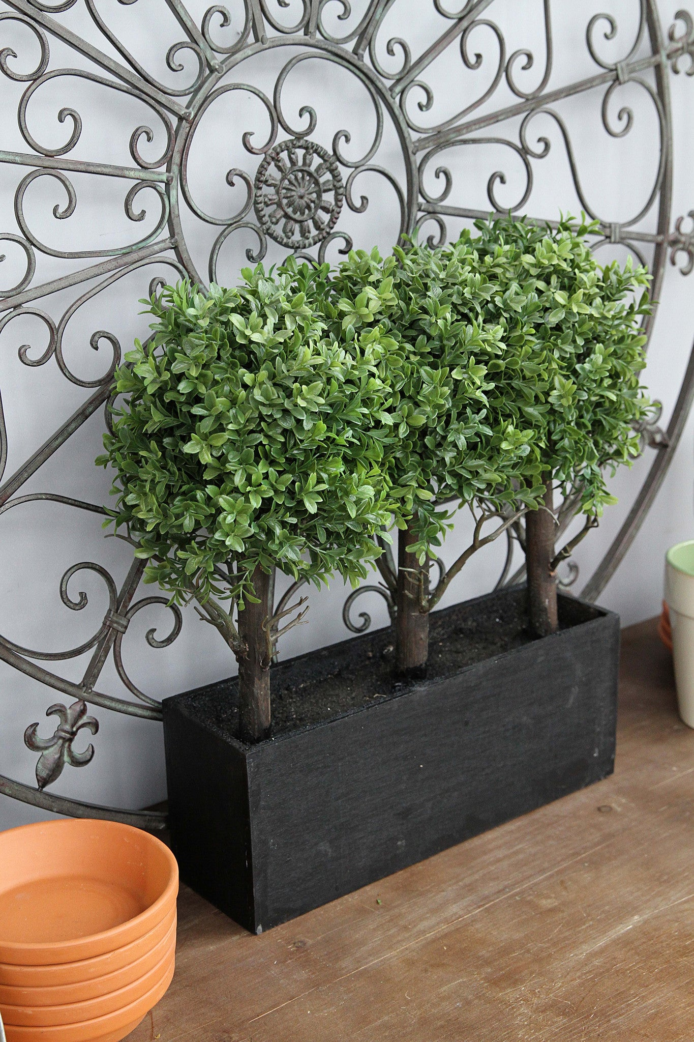 English Boxwood Décor in Container!