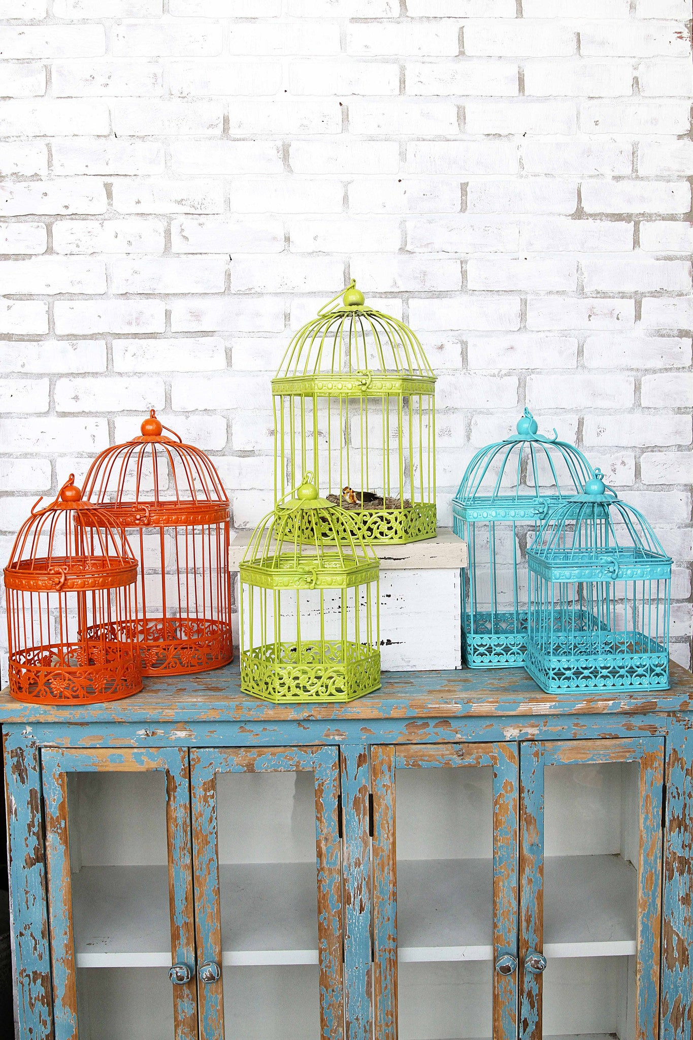 Stylish Birdcages in 3 Shapes & Colors