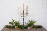 New Antique Gold Candleabra!
