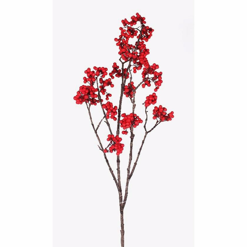 TALL RED CHOKE BERRY BRANCH X6