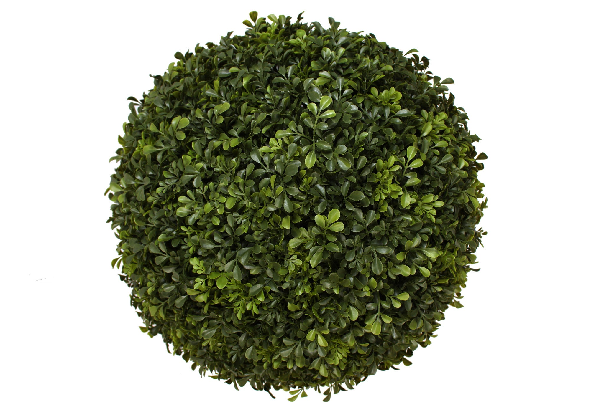 BEAUTIFUL Boxwood TOPIARY BALLS!